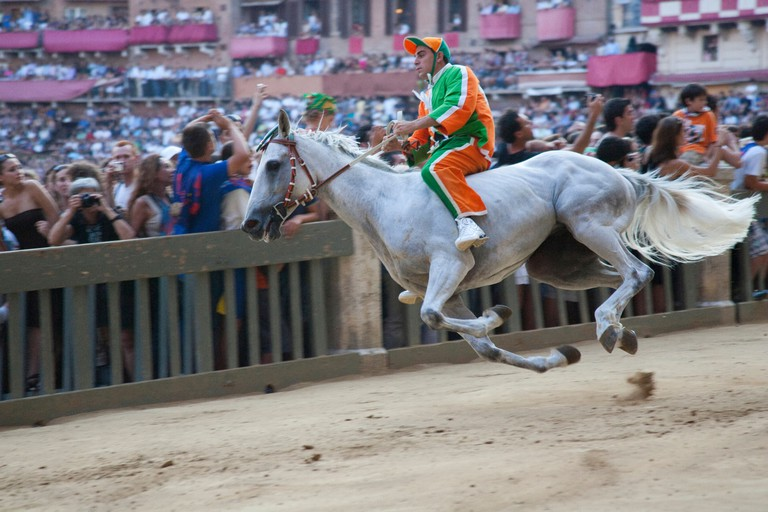 Horse race Palio di Siena is held at Piazza del Campo