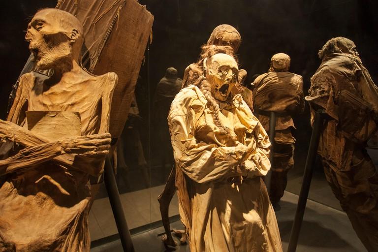 Macabre mummies in Guanajuato, Mexico's famous Mummy Museum.