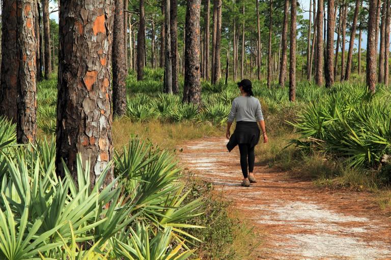 A female hiker Florida