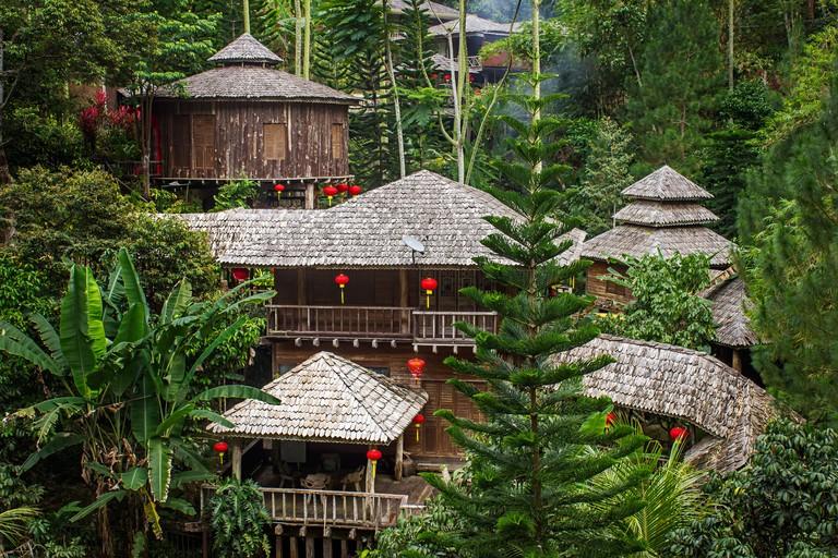 Fig Tree Hill Resort