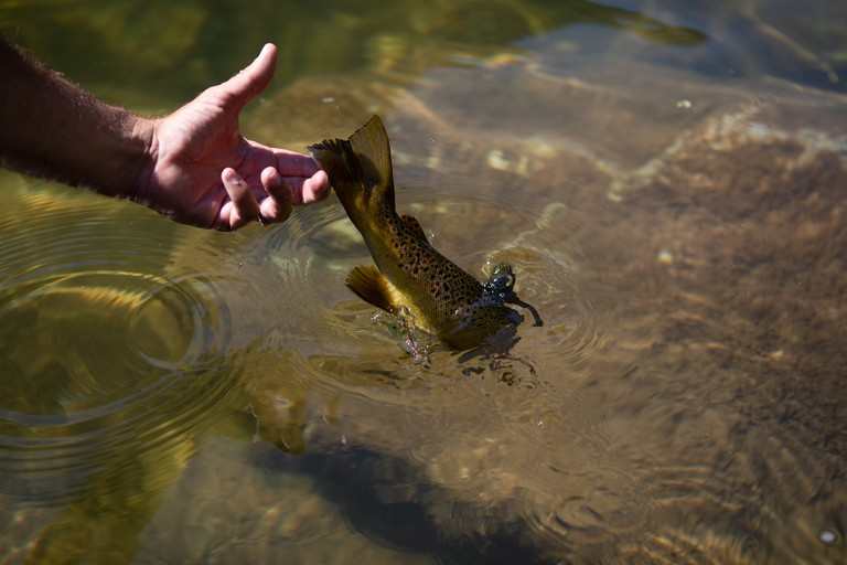 Flaming Gorge_Fly Fishing Guide_Colby Crossland_Jim Urquhart Photo_7746_Full