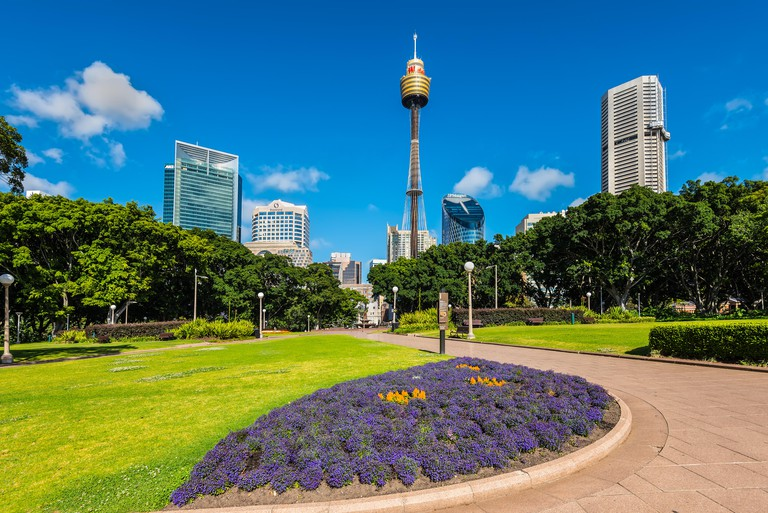 View at Sydney Moore Park, tower and modern buildings in the background in the Sydney