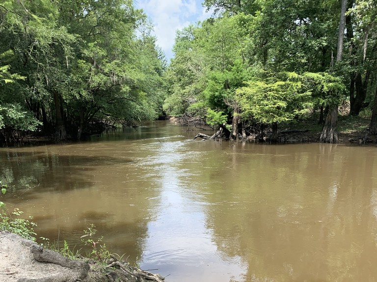 Lynches river in South Carolina