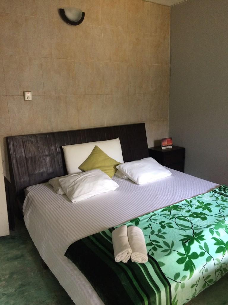 Greenhouse Hostel bedroom