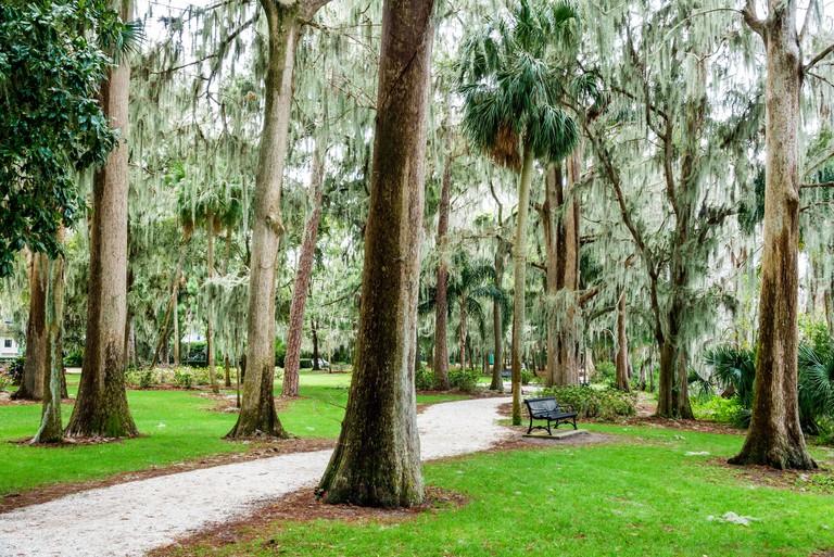 Florida, FL, South, Winter Park, Orlando, Kraft Azalea Garden, public park, cypress trees, moss, bench, path, sightseeing visitors travel traveling to