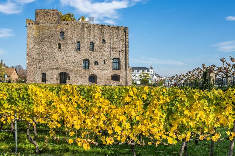 Bromserburg castle in Rudesheim am Rhein, wine making town in Germany
