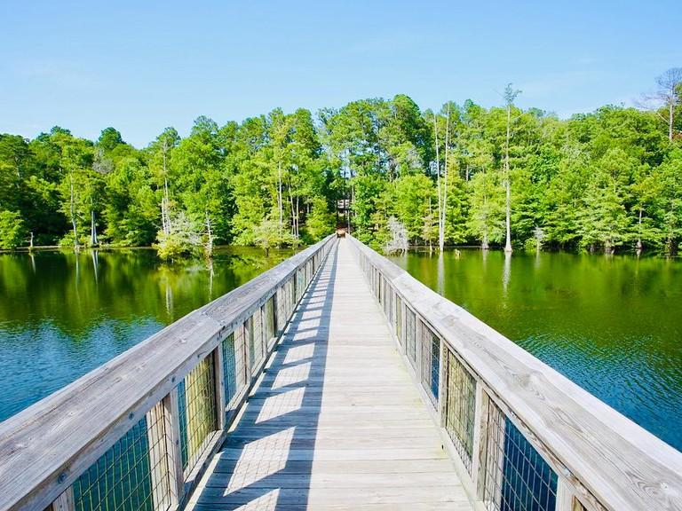Lake D'Arbonne State Park Site B_t1