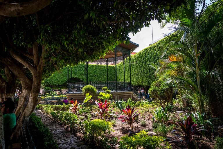 Jardin de la Union, or Union Garden, Guanajuato, city in Central Mexico