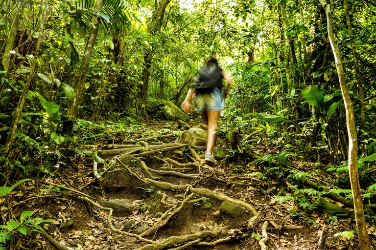 Rear view of a woman walking on a trail in a subtropical rainforest in Southern Brazil. Florianopolis, Santa Catarina, Brazil.