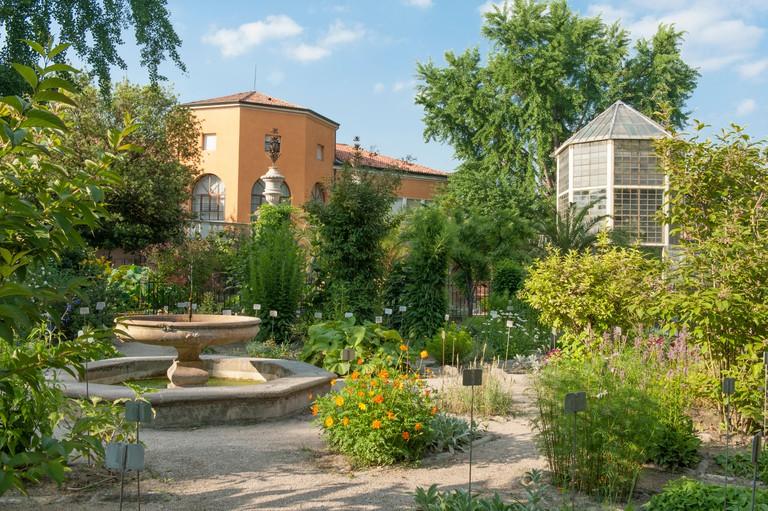 Padua's Orto Botanico, the world's oldest academic botanical garden, with (right) the greenhouse of the Goethe palm