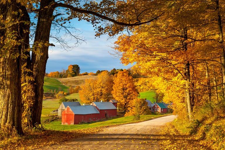 Autumn dawn at the Jenne Farm near South Woodstock, Vermont, USA
