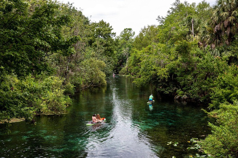 NO FILM, NO VIDEO, NO TV, NO DOCUMENTARY - Paddleboarders enjoy the spring run at Silver Springs State Park on Thursday, July 18, 2019 in Silver Springs, FL, USA. Photo by Patrick Connolly/Orlando Sentinel/TNS/ABACAPRESS.COM