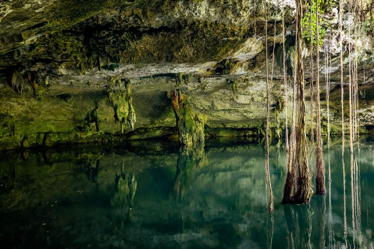 Scenic view of cenotes caves with fresh water in Mexico perfect place to swim