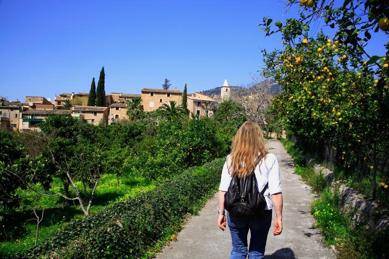 DF07TC Hiking trail at Biniaraix near Soller, Mallorca, Balearic Islands, Spain