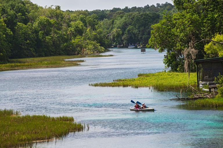 Rainbow Springs State Park is the source of the Rainbow River in North Central Florida.