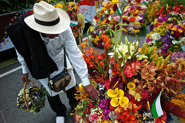A silletero admires a bouquet of flowers for the Silleteros Parade.