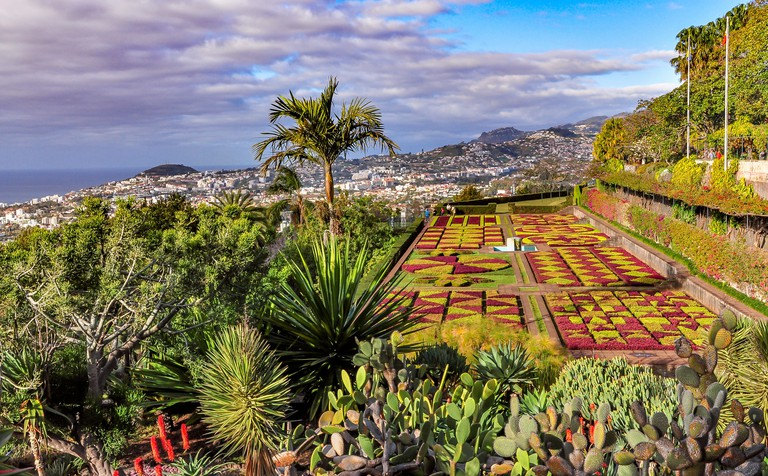 Botanical garden in Funchal and panoramic view of the city on a cloudy day, Madeira, Portugal
