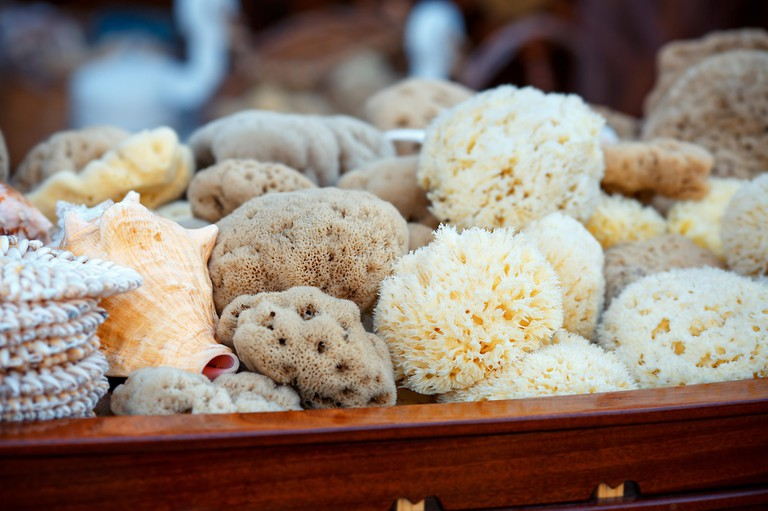 Sea sponges for sale at a market