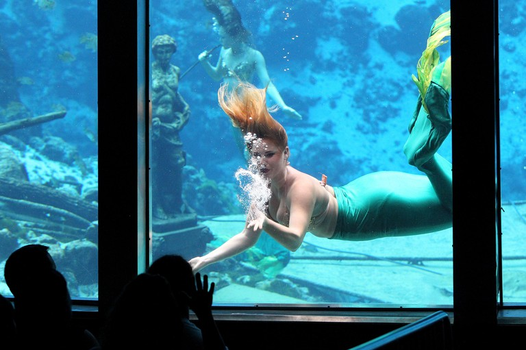Weeki Wachee, Florida, USA. 21st Mar, 2010. BRENDAN FITTERER | Times.Mermaid Whitney blows a bubble-filled kiss to the audience as she performs during the morning show of Hans Christian Andersen's ''The Little Mermaid'' Tuesday (6/28/16) at Weeki Wachee S