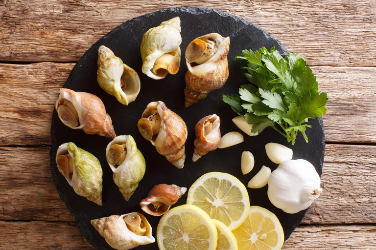 raw edible sea snails, whelks close-up and lemon, parsley, garlic on a slate board on the table. Vertical top view from above
