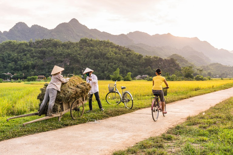 Woman riding a bicycle a rice field near Lac Village, Mai Chau valley, Vietnam. Beautiful fall sunset during harvest time.