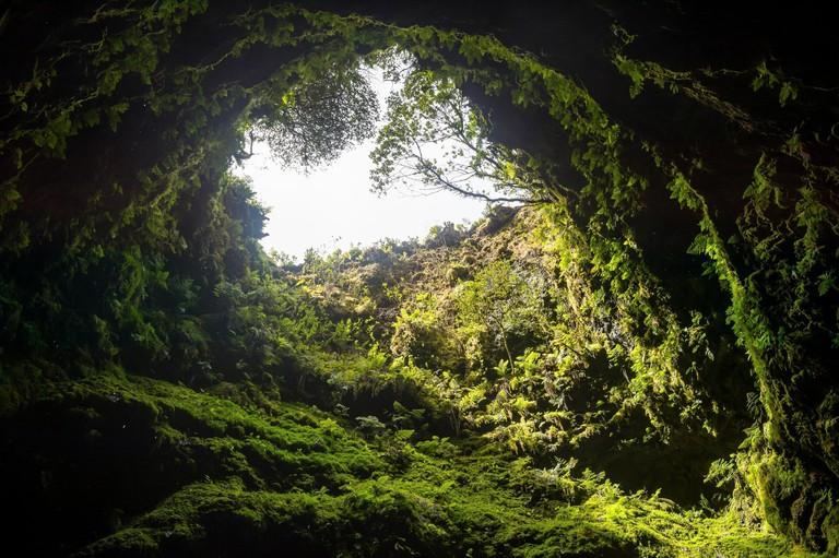 Portugal, Azores, Island of Terceira, Algar do Carvao