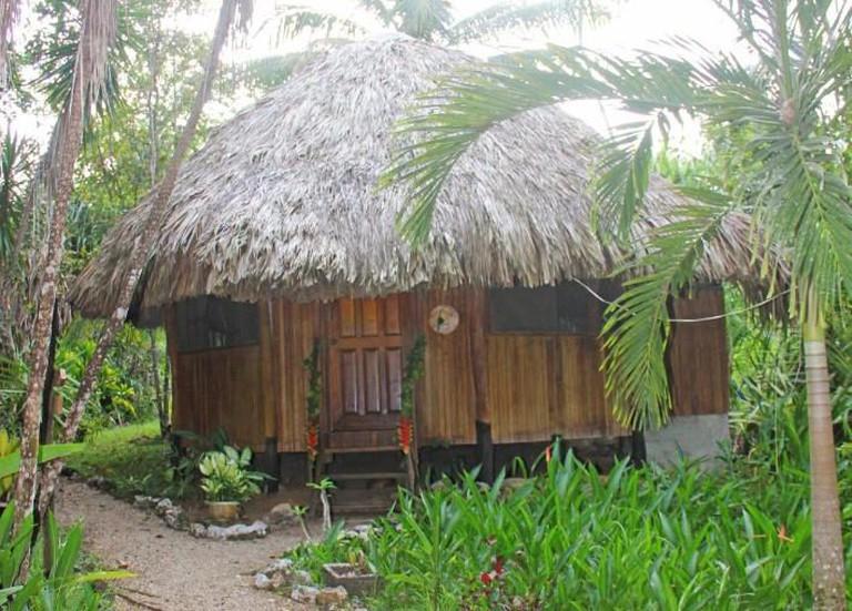 119207408 - Sun Creek Lodge - booking.com