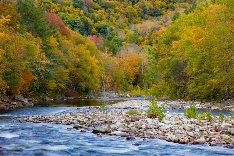 Loyalsock Creek is a 64-mile-long  tributary of the West Branch Susquehanna River and is one of the major natural attractions at World?s End State Par