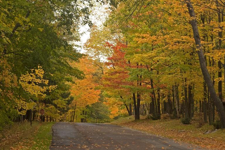 B75A97 WISCONSIN - Autumn foliage along the road up Rib Mountain in Rib Mountain State Park near Wausau