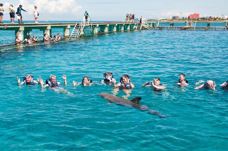 BX6XYE Dolphin Discovery at Chankanaab Park, Isla de Cozumel (Cozumel Island), Cozumel, off the Yucatan, Quintana Roo, Mexico