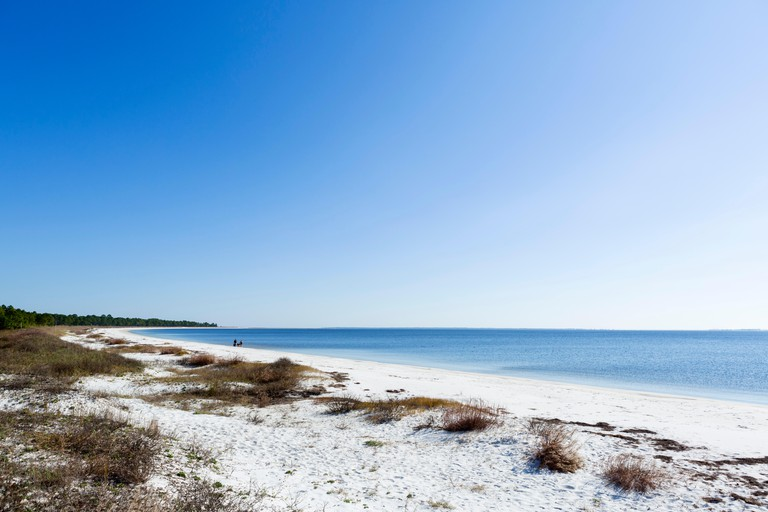 Carrabelle Beach off  US 98 east of Apalachicola, Franklin County, Gulf Coast, Florida, USA