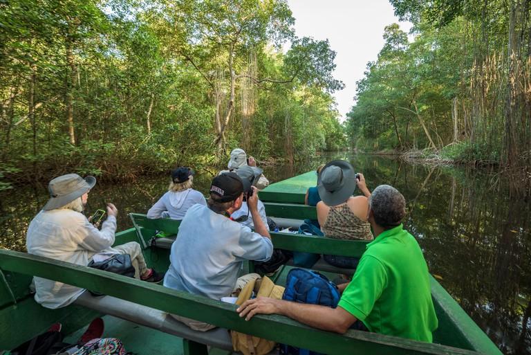 Visitors on boat tour of Caroni Swamp Bird Sanctuary on Trinidad island, Trinidad and Tobago.
