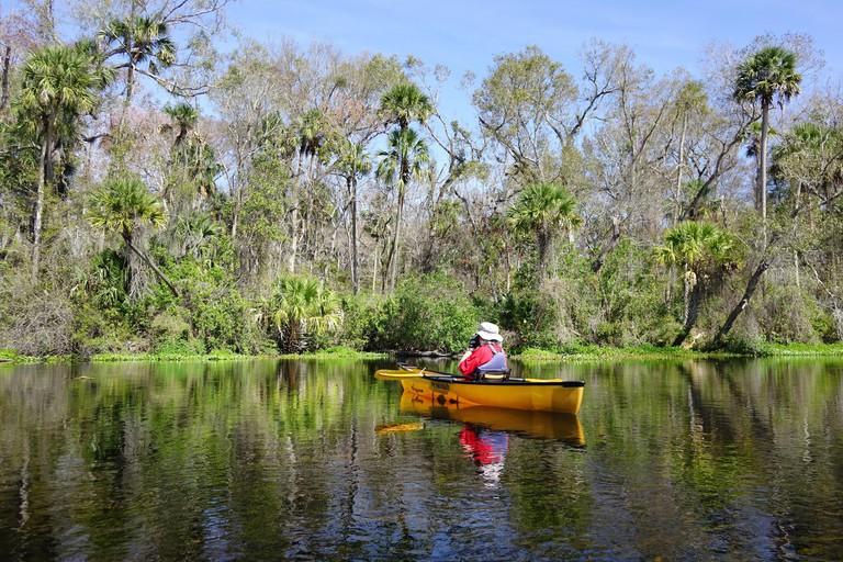Female paddler taking a photo on Alexander Creek, Ocala National Forest