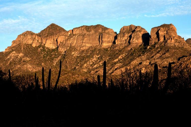 Mexico's southern Baja California state, February 17, 2009.