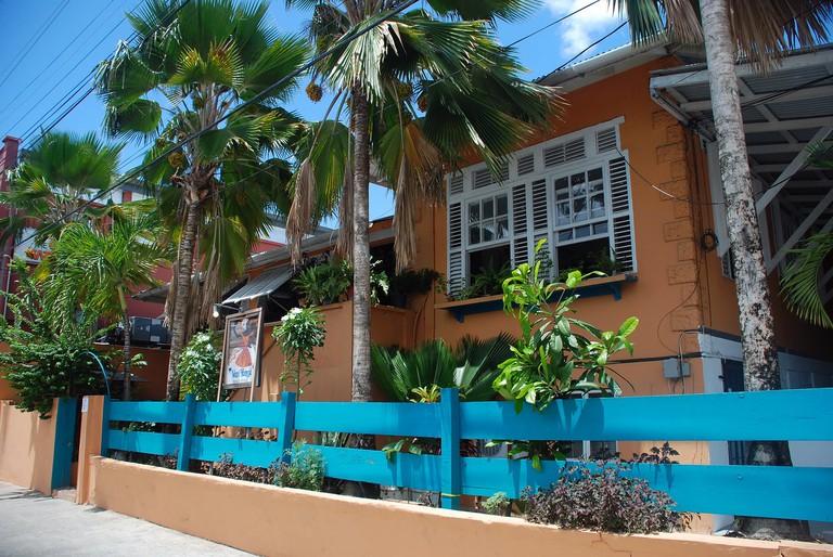 Veni Mange, Port of Spain, Trinidad
