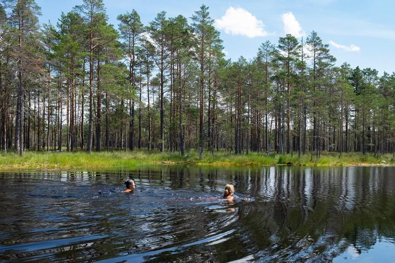 Tourists enjoying a swim in Viru Bog, Harju County, Estonia
