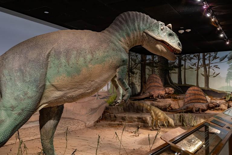 Las Vegas, OCT 4, 2020 - Interior view of the Las Vegas Natural History Museum