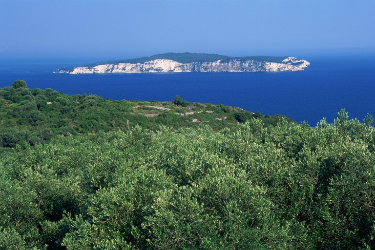 Olive groves and the island of Anti-Paxos seen from Paxos, Greek Islands, Greece, Europe