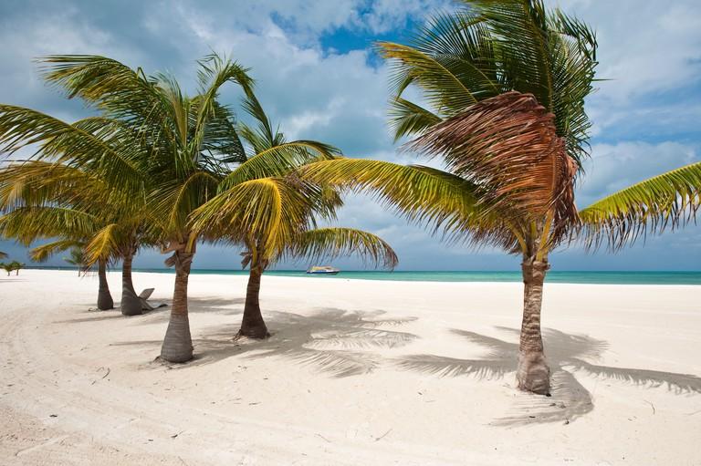 Isla Pasion (Passion Island) off Isla de Cozumel, Cozumel, Mexico, North America