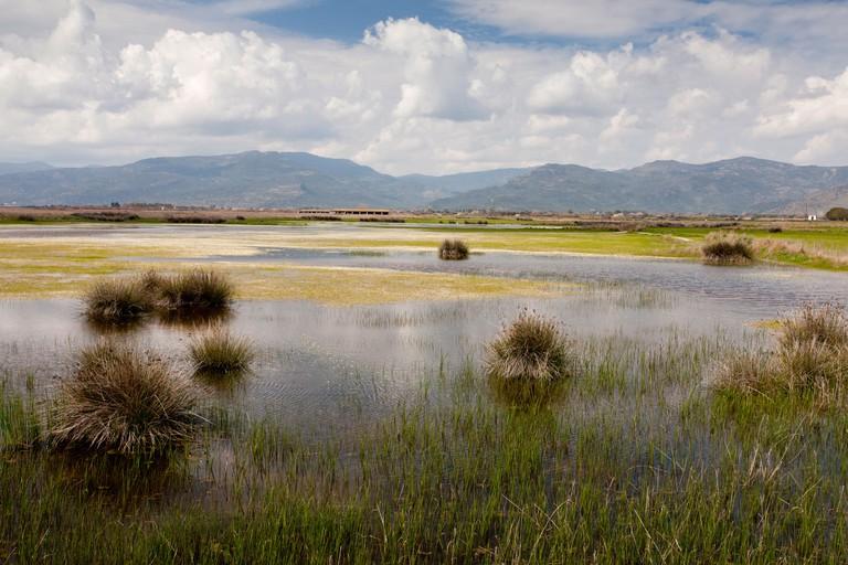 Bird-rich coastal wetlands at the head of the Gulf of Kalloni, Lesvos (Lesbos), Greece.