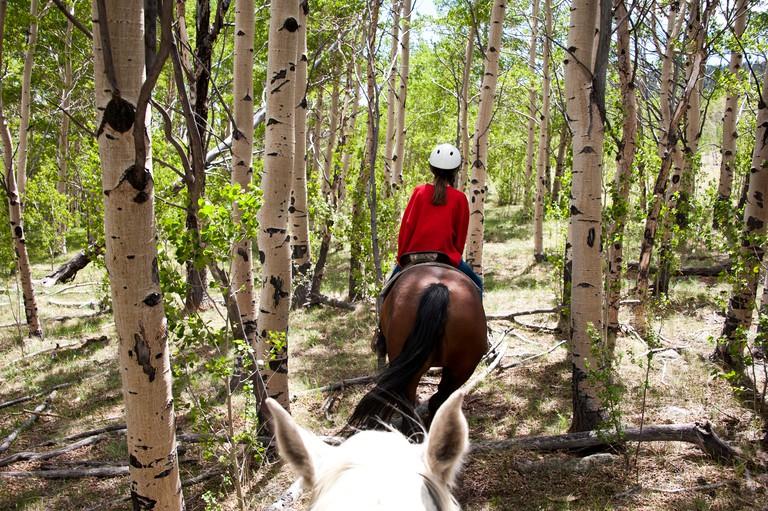 CERMAH Young girl horseback riding in South Park Colorado
