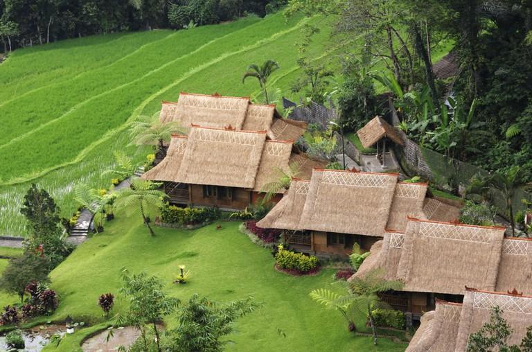 DG0C0W Rice Terrace at Pacung Village, Bali