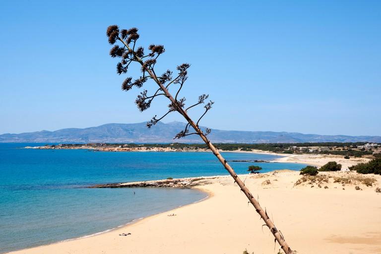 F17Y6A Griechenland, Kykladen, Naxos, Sudwesten, Psili Ammos Beach