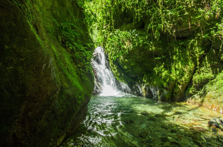 Beautiful small waterfall located inside of a green forest with stones in river at Mindo, Pichincha.