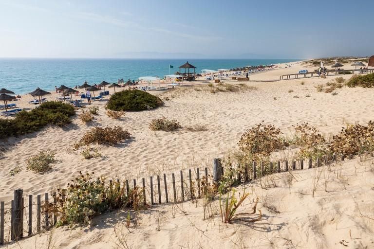 Praia da Comporta in afternoon sun, Comporta, Troia peninsula, Setubal district, Lisbon region, Portugal, Europe
