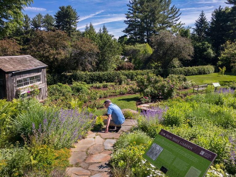 Man at Berkshire Botanical Garden in summer, Stockbridge, Massachusetts.. Image shot 2018. Exact date unknown.