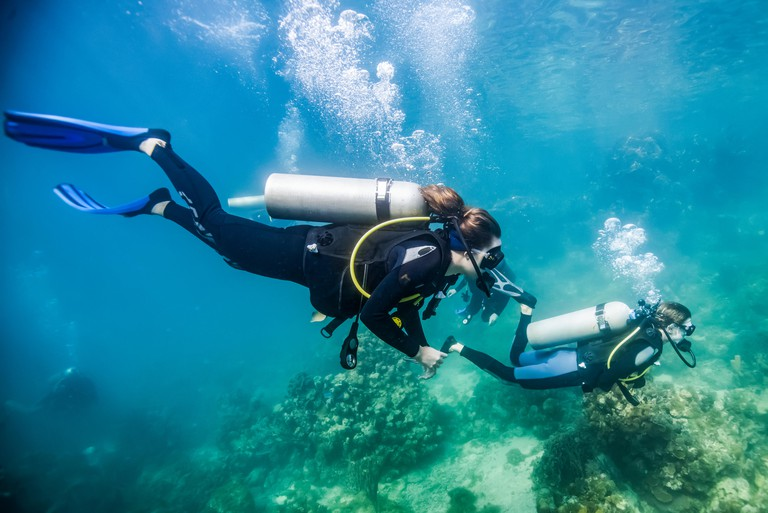 Scuba divers in Roatan Marine Park, Blue Channel dive site; Roatan, Honduras