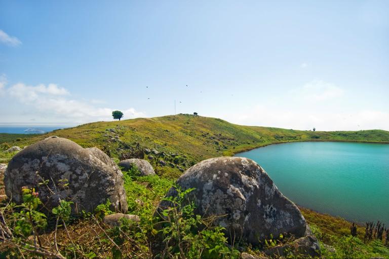 Galapagos Galapagos Island nature LAGUNA EL JUNCO highlands guave guava trees prairie ECUADOR SAN CRISTOBAL San Cristobal lagune