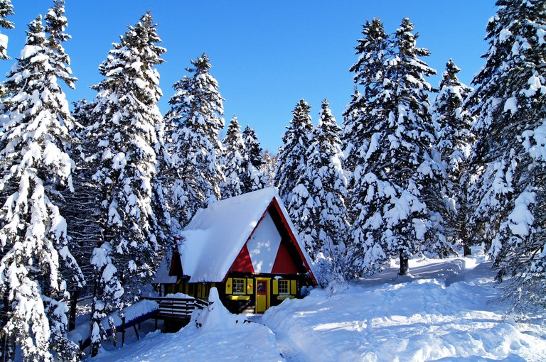 House covered with snow in the middle of fir forest Canada Quebec