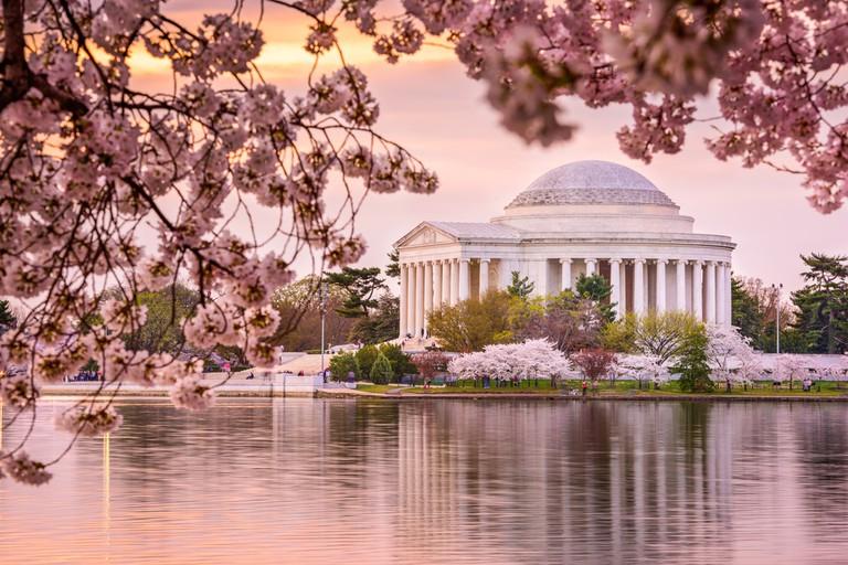 Washington DC's Tidal Basin and Thomas Jefferson Memorial